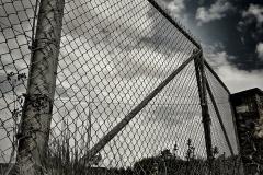 Naturfotografie-37