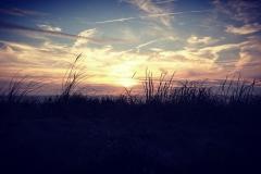 Naturfotografie-66