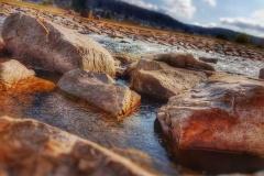 Naturfotografie-7