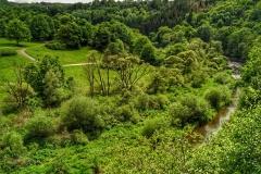Naturfotografie-77