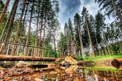 Naturfotografie-79