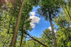 Naturfotografie-81