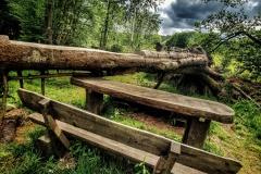 Naturfotografie-87